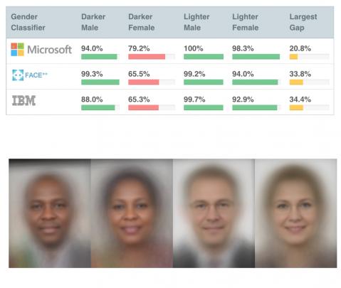 Example Algorithm Audit